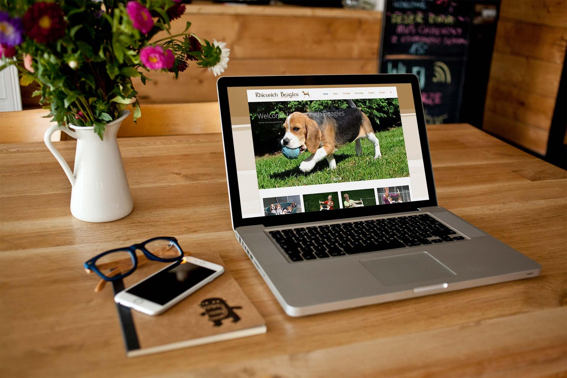 Rhiconich Beagles